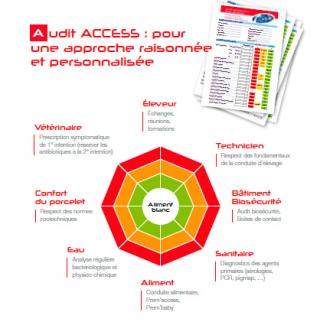 Audit Access